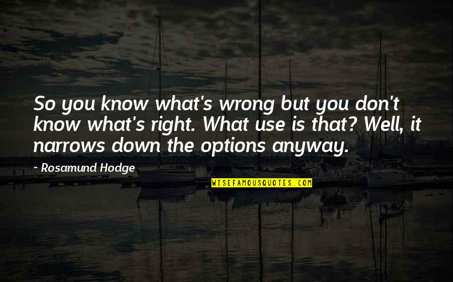You're So Wrong Quotes By Rosamund Hodge: So you know what's wrong but you don't
