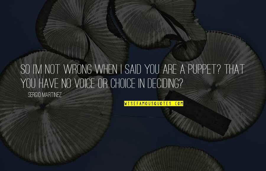 You're So Wrong Quotes By Sergio Martinez: So I'm not wrong when I said you