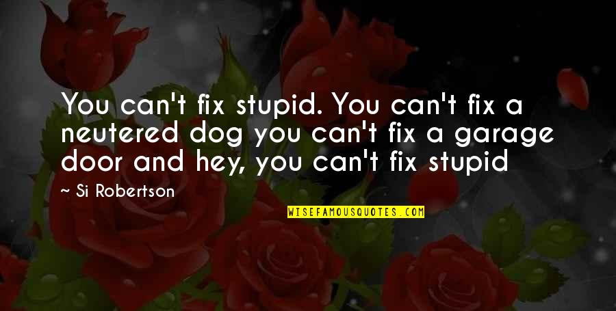 Youthquake Quotes By Si Robertson: You can't fix stupid. You can't fix a