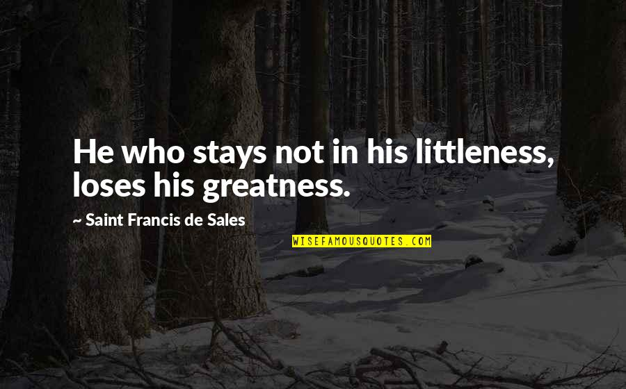 Youtube Lego Movie Quotes By Saint Francis De Sales: He who stays not in his littleness, loses