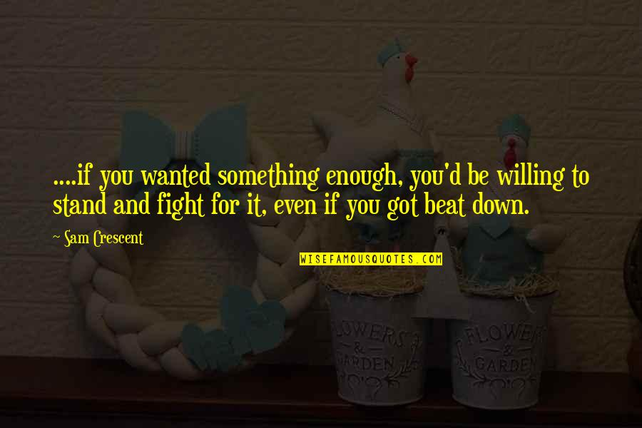 You've Got To Stand For Something Quotes By Sam Crescent: ....if you wanted something enough, you'd be willing