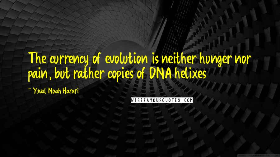 Yuval Noah Harari quotes: The currency of evolution is neither hunger nor pain, but rather copies of DNA helixes