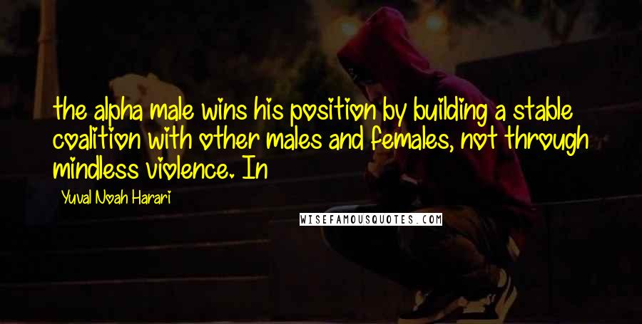 Yuval Noah Harari quotes: the alpha male wins his position by building a stable coalition with other males and females, not through mindless violence. In