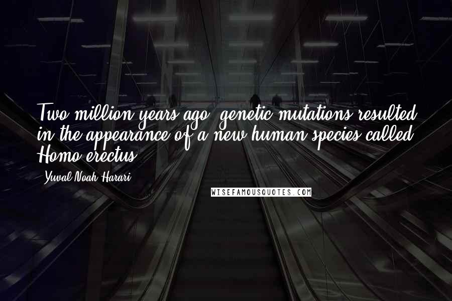Yuval Noah Harari quotes: Two million years ago, genetic mutations resulted in the appearance of a new human species called Homo erectus.