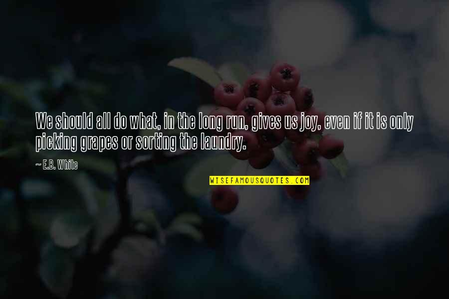 Zain Quotes By E.B. White: We should all do what, in the long