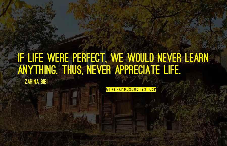 Zarina Bibi Quotes By Zarina Bibi: If life were perfect, we would never learn