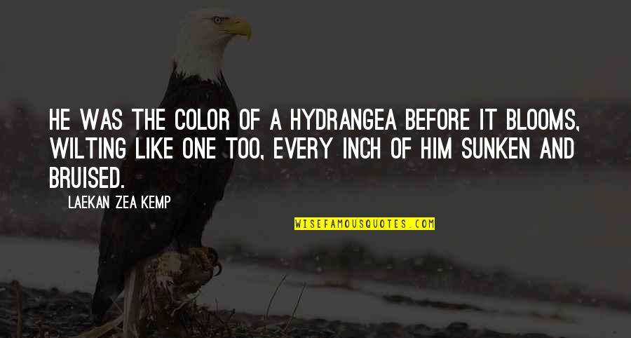 Zea Quotes By Laekan Zea Kemp: He was the color of a hydrangea before