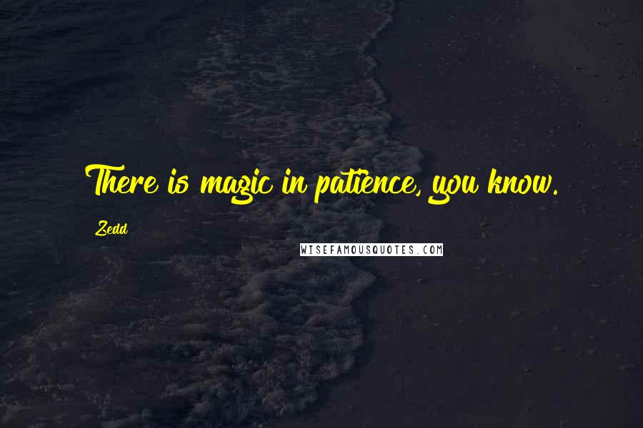 Zedd quotes: There is magic in patience, you know.