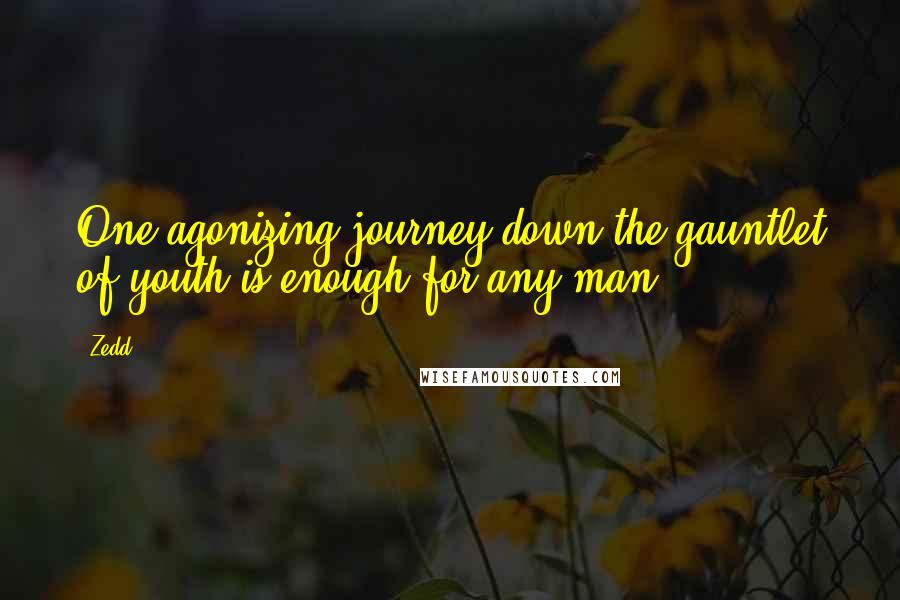 Zedd quotes: One agonizing journey down the gauntlet of youth is enough for any man.