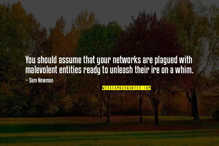 Zen Detachment Quotes By Sam Newman: You should assume that your networks are plagued