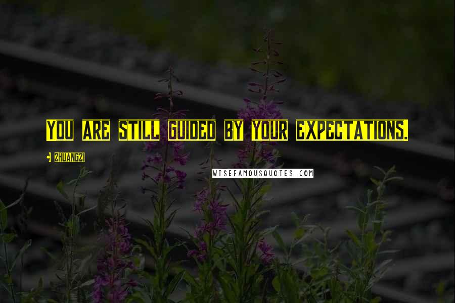 Zhuangzi quotes: You are still guided by your expectations.