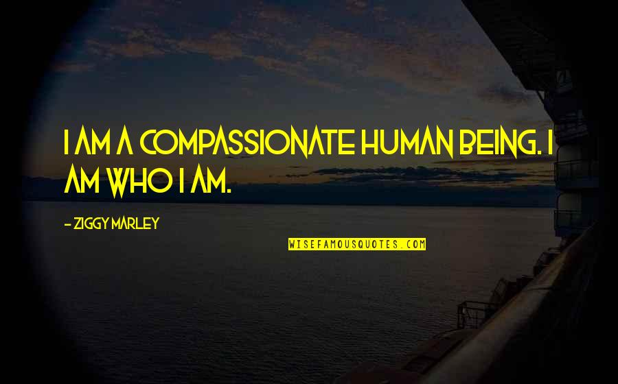 Ziggy Marley Quotes By Ziggy Marley: I am a compassionate human being. I am