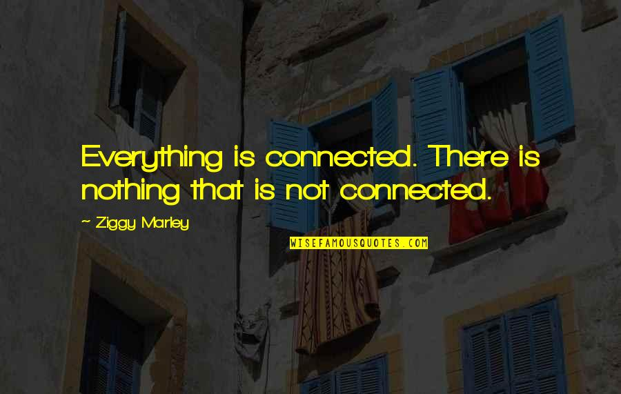 Ziggy Marley Quotes By Ziggy Marley: Everything is connected. There is nothing that is