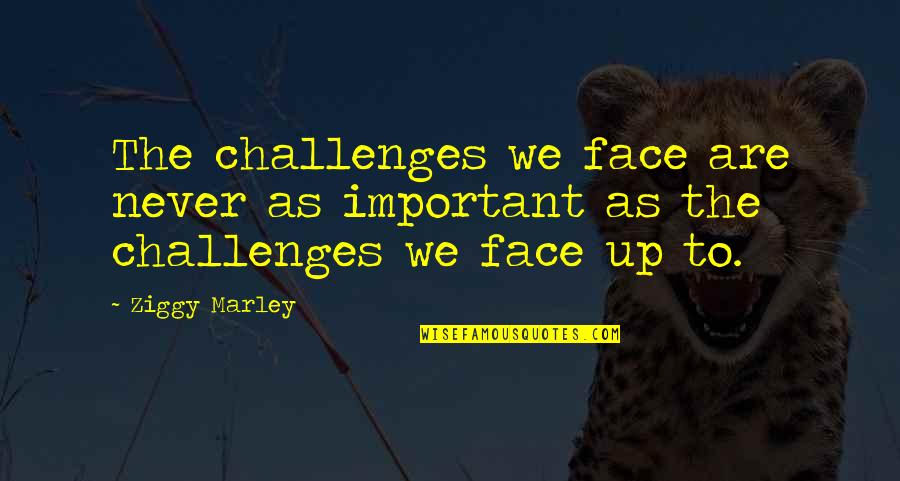 Ziggy Marley Quotes By Ziggy Marley: The challenges we face are never as important
