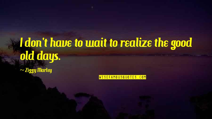 Ziggy Marley Quotes By Ziggy Marley: I don't have to wait to realize the
