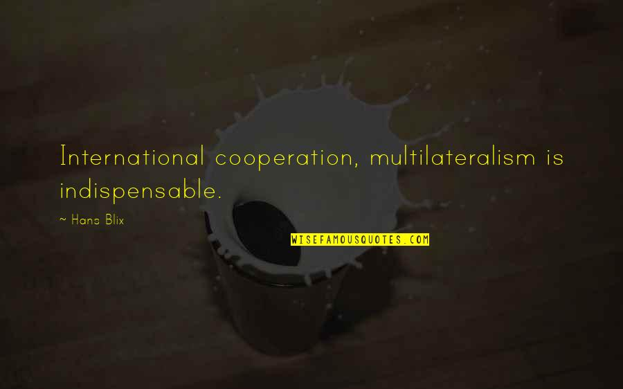 Zisabel Quotes By Hans Blix: International cooperation, multilateralism is indispensable.