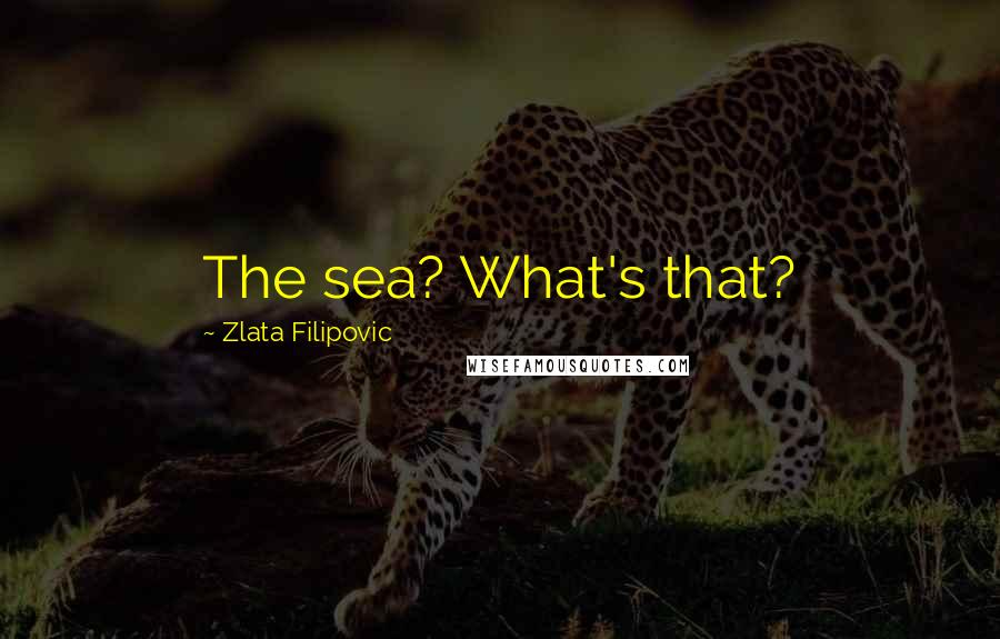 Zlata Filipovic quotes: The sea? What's that?