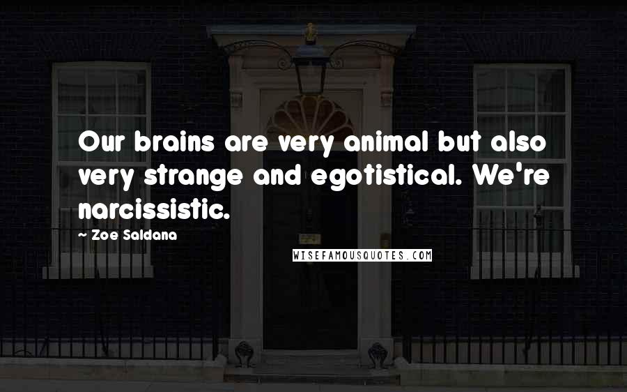 Zoe Saldana quotes: Our brains are very animal but also very strange and egotistical. We're narcissistic.