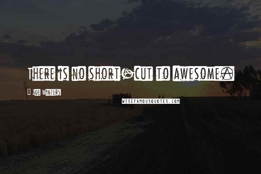 Zoe Winters quotes: There is no short-cut to awesome.