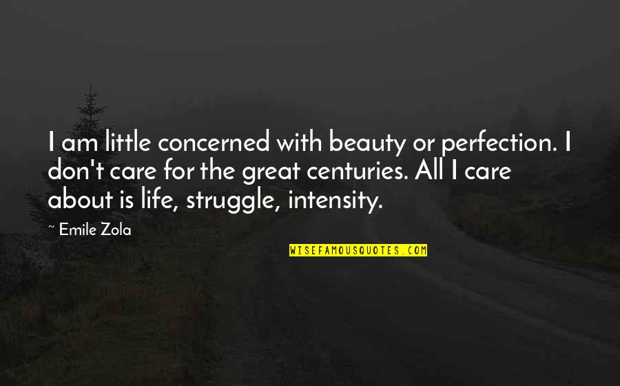 Zola Emile Quotes By Emile Zola: I am little concerned with beauty or perfection.