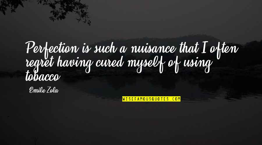 Zola Emile Quotes By Emile Zola: Perfection is such a nuisance that I often