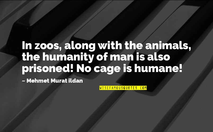 Zoos Are Humane Quotes By Mehmet Murat Ildan: In zoos, along with the animals, the humanity