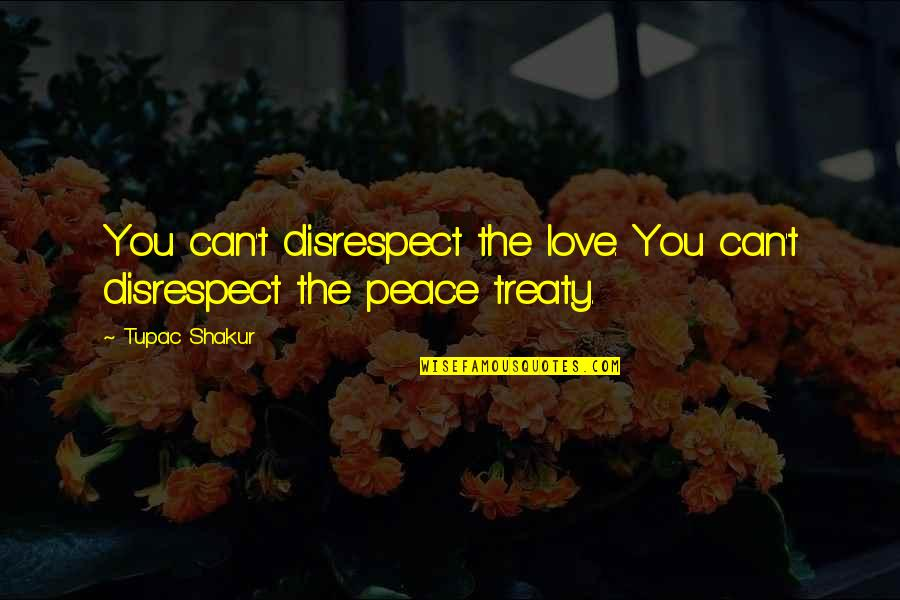 Zulu Guys Quotes By Tupac Shakur: You can't disrespect the love. You can't disrespect