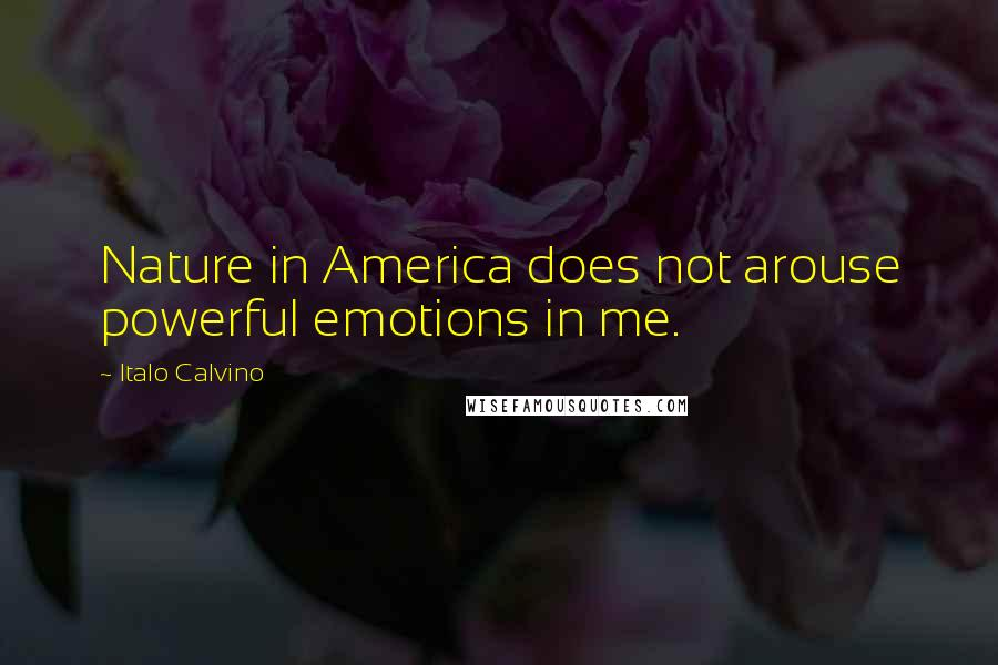 italo calvino quotes nature in america does not arouse powerful
