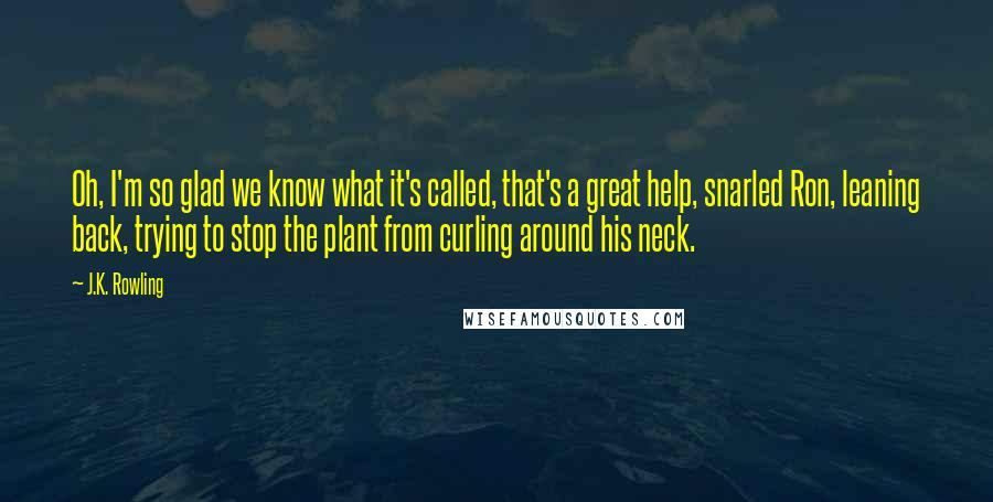 J.K. Rowling Quotes: Oh, I'm so glad we know what it's called, that's a great help, snarled Ron, leaning back, trying to stop the plant from curling around his neck.
