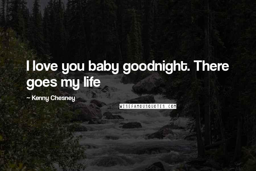 Kenny Chesney Quotes: I love you baby goodnight. There goes ...