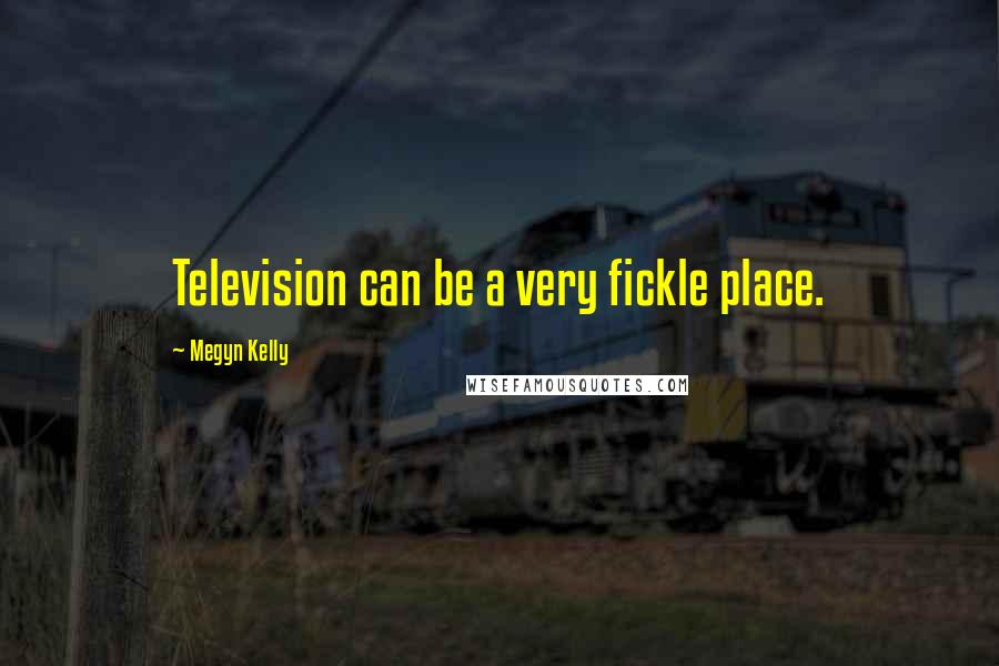 Megyn Kelly Quotes: Television can be a very fickle place.