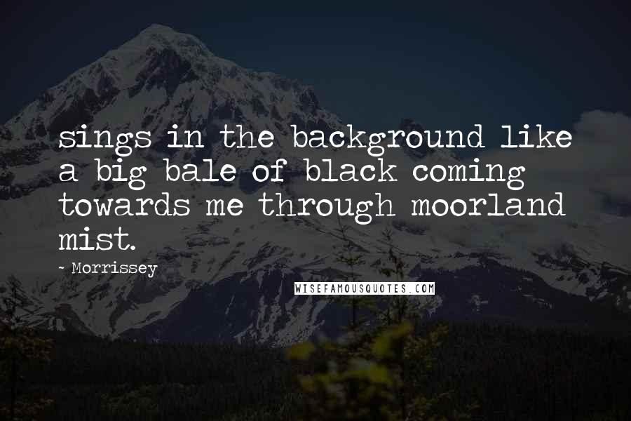 Morrissey Quotes: sings in the background like a big bale of black coming towards me through moorland mist.