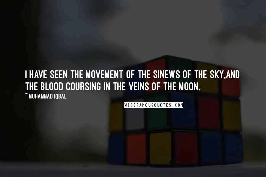Muhammad Iqbal Quotes: I have seen the movement of the sinews of the sky,And the blood coursing in the veins of the moon.