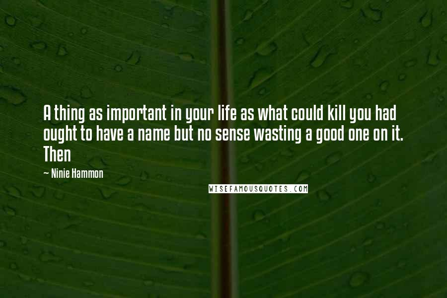 Ninie Hammon Quotes: A thing as important in your life as what could kill you had ought to have a name but no sense wasting a good one on it. Then