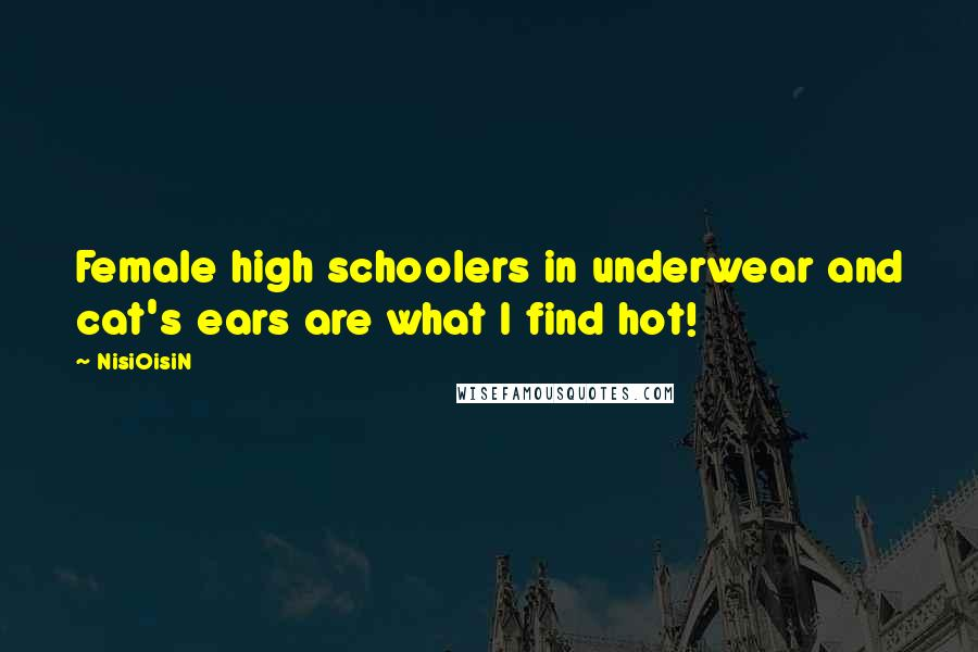 NisiOisiN Quotes: Female high schoolers in underwear and cat's ears are what I find hot!