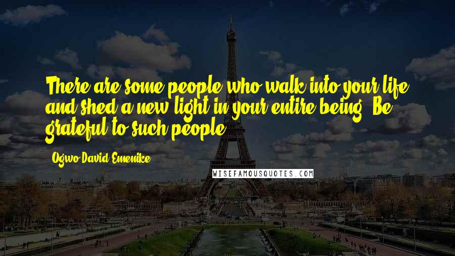 Ogwo David Emenike Quotes: There are some people who walk into your life and shed a new light in your entire being. Be grateful to such people.