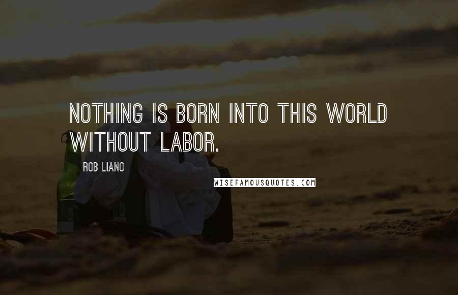 Rob Liano Quotes: Nothing is born into this world without labor.