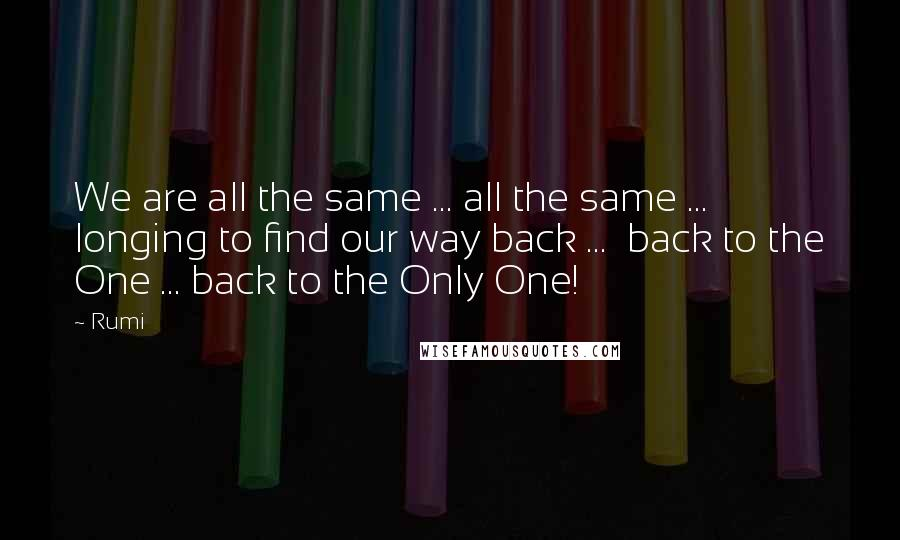 Rumi Quotes: We are all the same ... all the same ...  longing to find our way back ...  back to the One ... back to the Only One!