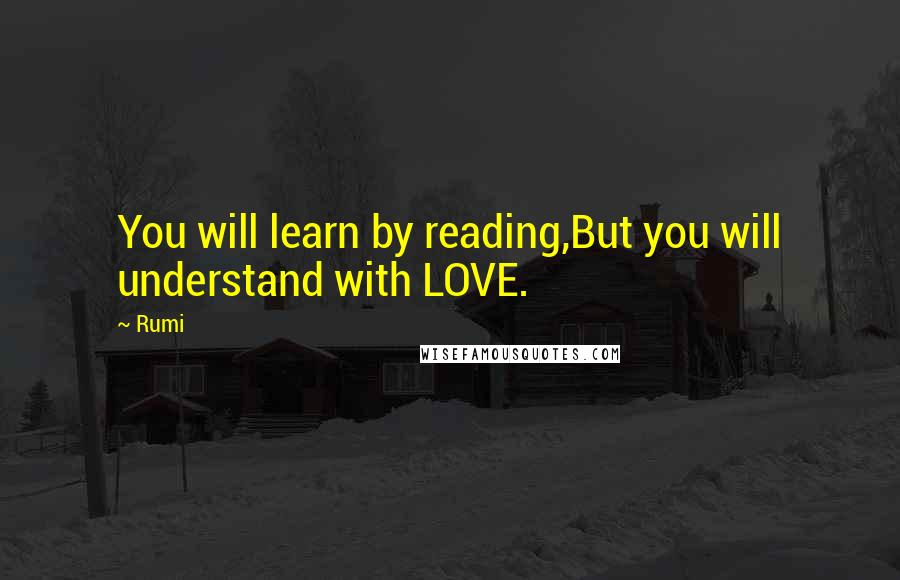 rumi quotes you will learn by reading but you will understand