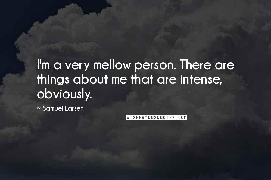 Samuel Larsen Quotes: I'm a very mellow person. There are things about me that are intense, obviously.