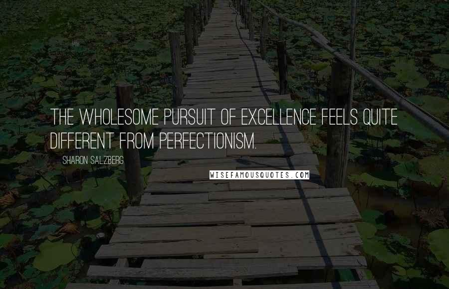 Sharon Salzberg Quotes: The wholesome pursuit of excellence feels quite different from perfectionism.