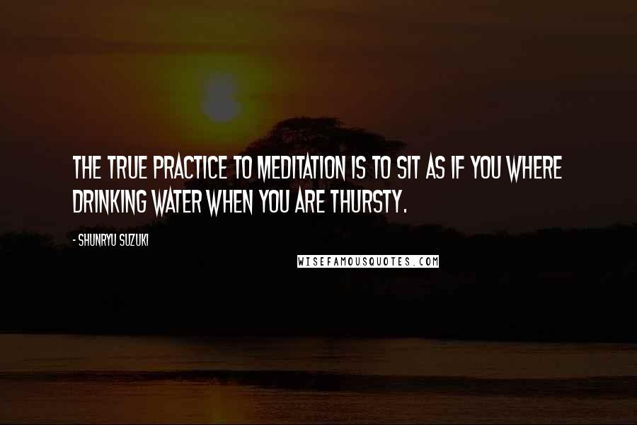 Shunryu Suzuki Quotes: The true practice to meditation is to sit as if you where drinking water when you are thursty.