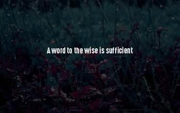 3 Word Wise Quotes