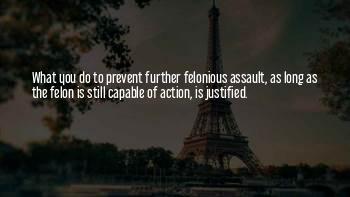 Felon Quotes
