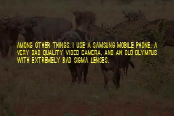 Mobile Camera Quotes