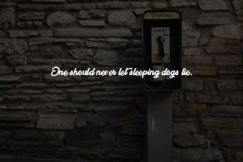 Sleeping Dogs Lie Quotes