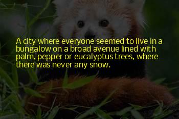 Snow On Trees Quotes