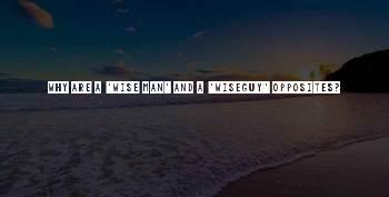 Wiseguy Quotes