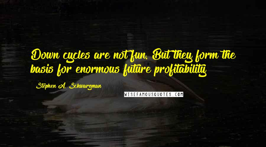 Stephen A. Schwarzman Quotes: Down cycles are not fun. But they form the basis for enormous future profitability