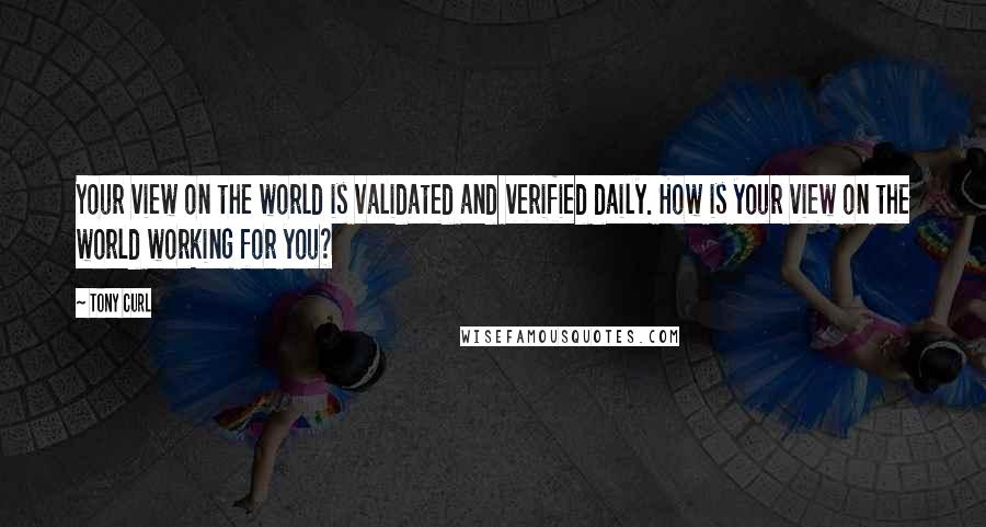 Tony Curl Quotes: Your view on the world is validated and verified daily. How is your view on the world working for you?